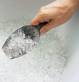 Hand Of Man Hold Ice Scoop
