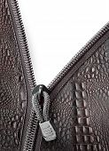 Crocodile Leather With Zipper