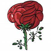 Greetings Festive Beauty Mark Rose Vektor