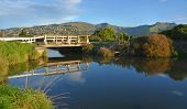 Black Heron Fishing On A Heathcote River Bridge
