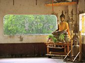 Golden Buddha On Rain Background