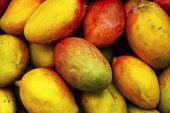 picture of mango  - fresh raw sweet mango heap as background on market - JPG