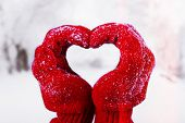 Woman's hands in red gloves on winter natural background