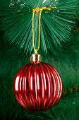 Christmas decoration on the fir tree