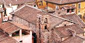 Roofs Of Lucca, City Located In Tuscany, Italy.