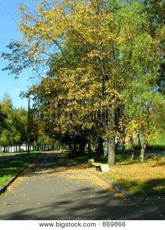 poster of Autumn In The City
