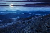 picture of moon-flower  - composite landscape with high wild grass and purple flowers on the top of high mountain at night in full moon light - JPG