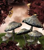stock photo of fairy-mushroom  - Enchanted nature series  - JPG