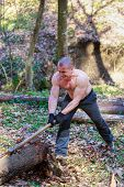 picture of ax  - woodcutter cut a trunk with an ax in forest - JPG