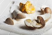 picture of edible mushroom  - closeup of different edible mushrooms on paper - JPG
