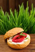 stock photo of scallion  - Sandwich with gravlax parsley scallion capers and cream cheese on spring grass background vertical with space - JPG
