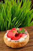 pic of scallion  - Sandwich with gravlax parsley scallion and cream cheese on spring grass background vertical with space - JPG