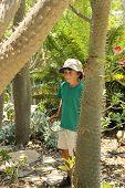 The Boy In The Botanical Garden