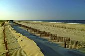Evening On The Dunes