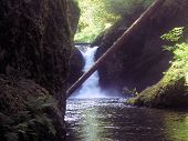 stock photo of punchbowl  - punchbowl falls near hood river oregon - JPG