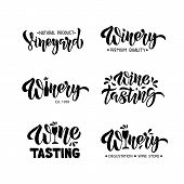 Winery - Hand Drawn Modern Brush Lettering Set. Wine Tasting Quotes. Typography Design For Logo Wine poster