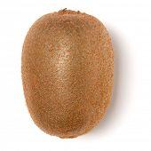 Whole kiwi fruit isolated on white background closeup. Kiwifruit flatlay. Flat lay, top view. poster