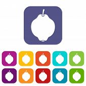 Quince Fruit Icons Set Illustration In Flat Style In Colors Red, Blue, Green And Other poster
