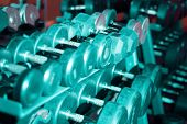 Many Dumbbell In The Gym. Fitness. Weightlifting. Body-building Toned poster