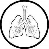 Vector  lungs icon. Black  and white. Simply change. In my portfolio there is version 4 in 1.