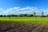 Plowed Field, Forest And White Clouds On Blue Sky - Blur And Contrasting Colors poster