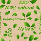 Packaging Paper For Organic Products. The Concept Of Proper And Healthy Nutrition.eco Natural Organi poster