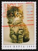 Postage stamp GB 1990 Prevention of Cruelty toAnimals