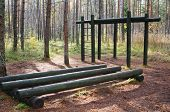 Exercise Equipment  Of Logs  In A Forest Park