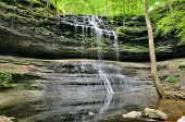 stock photo of mauri  - Still House Falls Park Maury County Tennessee