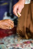 Haldi Ceremony, Indian Wedding