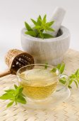image of naturopathy  - Lemon verbena Herbal Tea in a glass cup - JPG