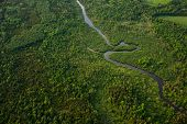 Aerial View Of A Winding River Surrounded By Green Forest