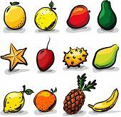 Exotic fruits sketch drawing vector set