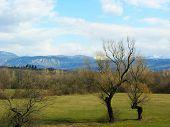 stock photo of former yugoslavia  - Spring in Montenegero in former part of Yugoslavia - JPG
