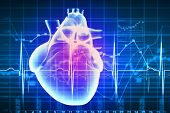 stock photo of cardiology  - Virtual image of human heart with cardiogram - JPG