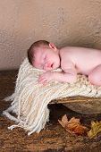 11 days old newborn baby sleeping in an antique wooden trencher bowl