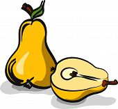 Pear fruits sketch drawing vector set on white