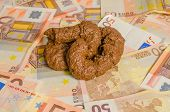 image of turds  - A onto some fifty euros bills - JPG