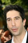 David Schwimmer  at the Los Angeles Premiere of 'Madagascar Escape 2 Africa'. Mann Village Theatre, Westwood, CA. 10-26-08