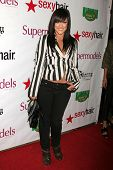 Lacey Schwimmer  at SuperModels Unlimited Magazine's Hollywoods's 100 Most Beautiful Party. Social Hollywood, Hollywood, CA. 11-12-08