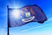 Michigan (USA) flag waving on the wind