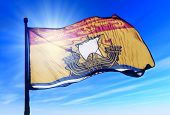 New Brunswick (Canada) flag waving on the wind