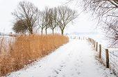 Footpath In A Snowy Landscape