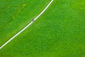 Walking Footpath In Green Field
