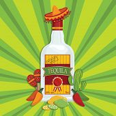 foto of maracas  - mexican themed tequila bottle decoration with maracas cactus and chili peppers with transparencies - JPG