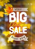 Advertisement about the autumn sale on defocused background with leaves. Vector illustration.