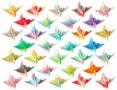 Paper Cranes Pattern