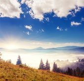 Fantastic sunny day in mountain landscape and creamy fog. Carpathian, Ukraine, Europe. Beauty world.