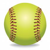Softball Isolated On White Illustration poster