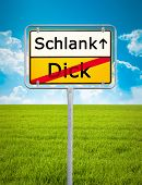 An image of a german city sign with the text thick - thin